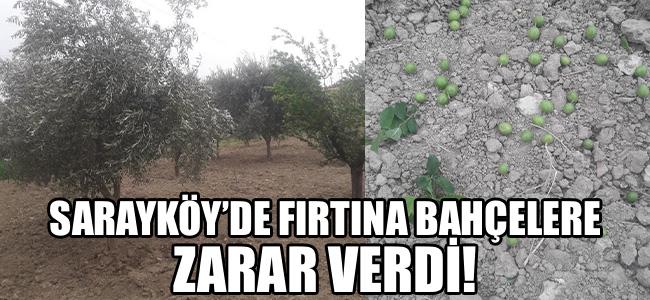 Sarayköy'de fırtına bahçelere zarar verdi!