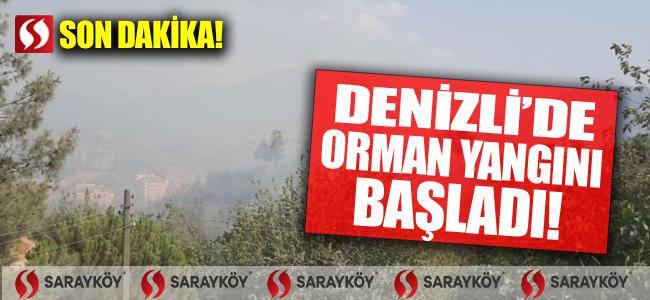 SON DAKİKA! Denizli'de orman yangını başladı!