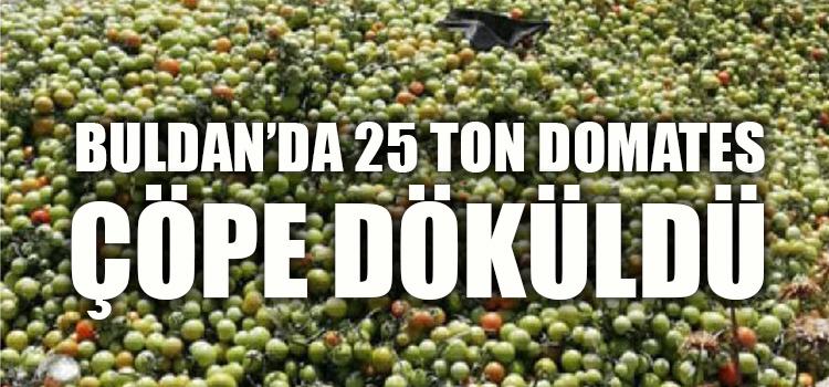 25 TON DOMATESİ DÖKÜP GİTMİŞLER