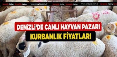 Denizli'de Canlı Hayvan Pazarı Kurbanlık Fiyatları