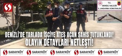 Denizli'de tarlada işçiye ateş açan şahıs tutuklandı! Olayın detayları netleşti!