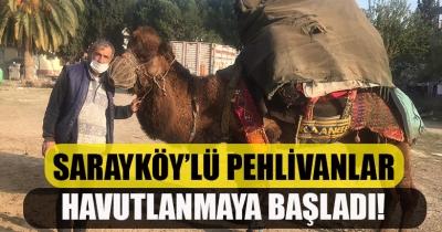 SARAYKÖY'LÜ PEHLİVANLAR HAVUTLANMAYA BAŞLADI!